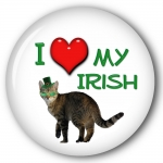 """I Love my Irish"" Cat pictured"