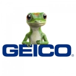 Geico Insurance Name Badge